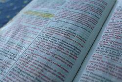 Errais, não conhecendo as Escrituras e a Deus. Mt 22.29